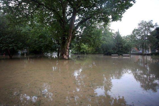 Überflutet: Die Beschaffenheit des Bodens spielt eine wichtige Rolle bei Überschwemmungen. Ihre Speicherkapazität ist entscheidend dafür, ob es zu einer Überschwemmung kommt.