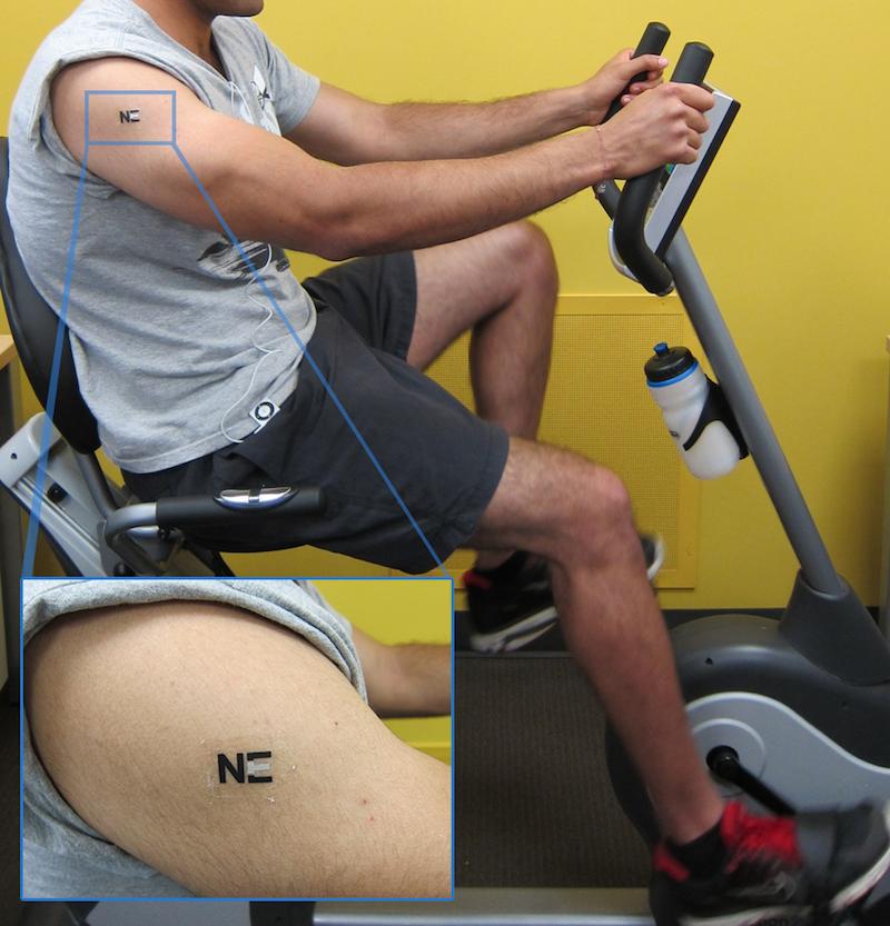 Der im Tattoo versteckte Sensor ist nur zwei bis drei Millimeter groß und generiert etwa vier Mikrowatt Leistung. Das reicht noch nicht aus, um beispielsweise eine Uhr mit Strom zu versorgen. Doch die Forscher sind zuversichtlich, auch noch eine Möglichkeit zum Speichern des Biostroms zu entwickeln.