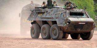 Rheinmetall darf Panzerfabrik nach Algerien exportieren