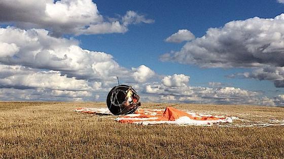 Die gelandete Raumkapsel Foton-M4: Andere Tiere, etwa Fruchtfliegen, haben den Flug überlebt und sich sogar vermehrt.