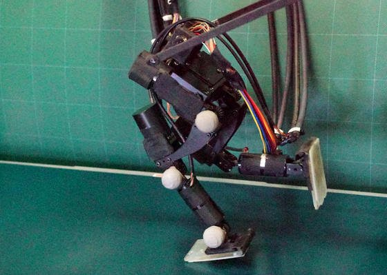 Der japanische Roboter Achires legt auf seinen zwei Beinen 4,2 Kilometer pro Stunde zurück.