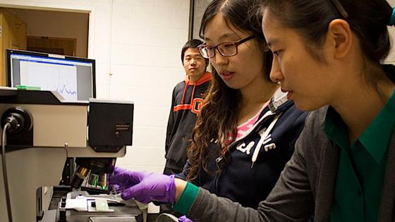 Forscher arbeiten an der Oregon State University mit der sogenannten Raman-Spektroskopie: Sie geben eine flüssige Probe auf den Sensor, richten einen Laserstrahl auf die Mikroalge und messen die Reflektionen, die charakteristisch für bestimmte Umweltgifte sind.