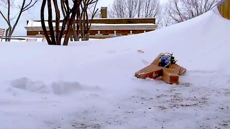 Softbot kriecht auch wacker bei minus neun Grad Celsius durch den Schnee. Jetzt wollen die Ingenieure sein Tempo erhöhen.