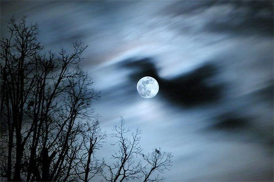 Manfred Memorial Moon Mission:Im Oktober will der Bremer Raumfahrtkonzern OHB im Gedenken an Firmengründer Manfred Fuchs einen Minisatelliten auf den Mond schicken.