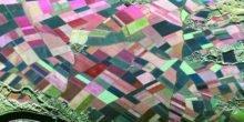 Radarmessungen sollen Landwirten bessere Ernten ermöglichen