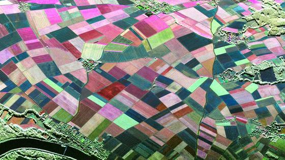 Die Felder im bayerischen Wallerfing als Radaraufnahme: Die DLR-Forscher leiten aus diesen Aufnahmen Erkenntnisse ab, die Landwirten bei der Bewirtschaftung helfen.