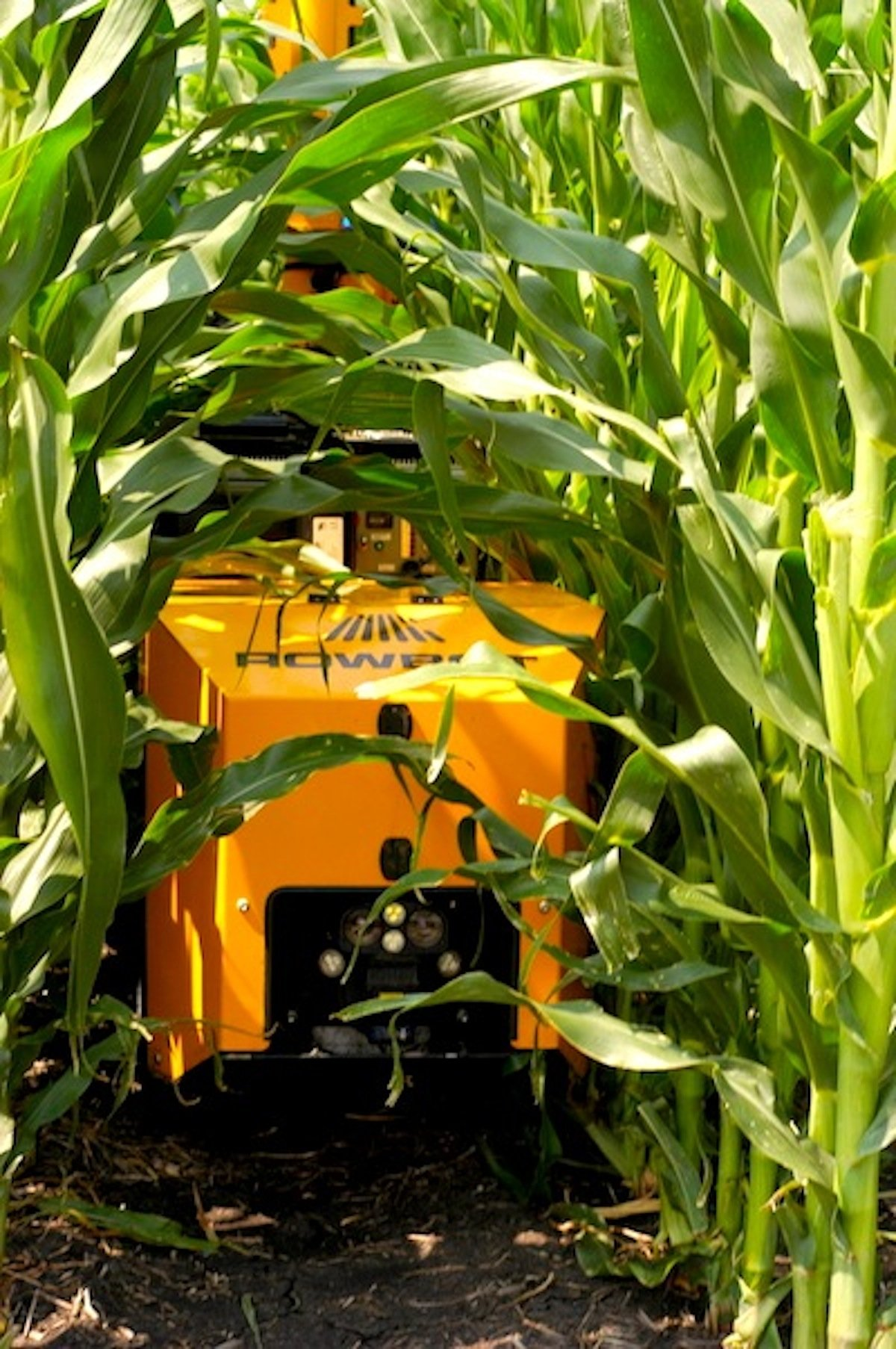 Der Rowbot fährt in den USA mit GPS und Laserscanner autonom durch Maisfelder und übernimmt das Düngen.