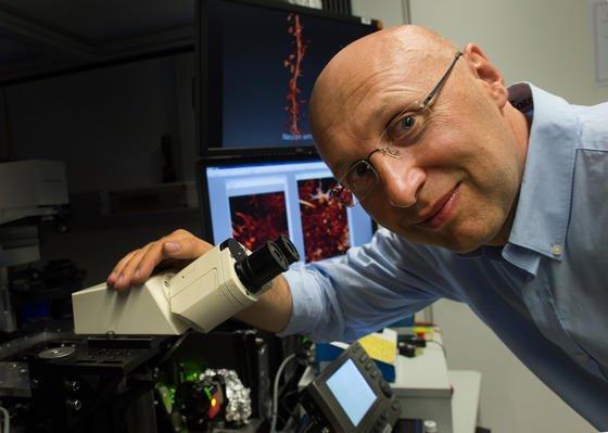 Nobelpreisträger Stefan Hell mit den Super-Mikroskop STED (Stimulated Emission Depletion): Der Mikroskop kann erstmals winzigste Strukturen in lebenden Zellen sichtbar machen. Ein Lichtblick für Forscher, die sich beispielsweise mit der Parkinson-Erkrankung beschäftigen.