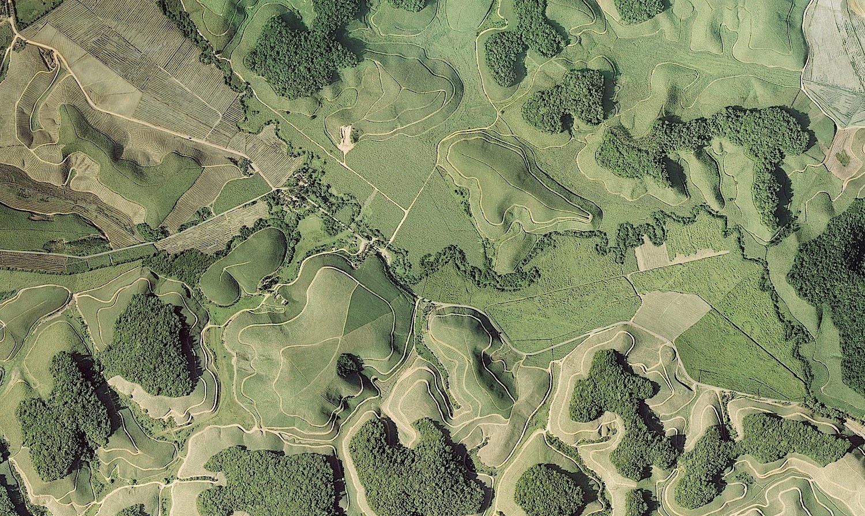 Die Luftaufnahme zeigt Waldfragmente des atlantischen Regenwaldes im Nordosten Brasiliens, umgeben von Zuckerrohrplantagen. Durch die Abholzung stehen immer mehr Bäume an Waldrändern und verlieren dort ihre Fähigkeit zur ausreichenden CO2-Speicherung.