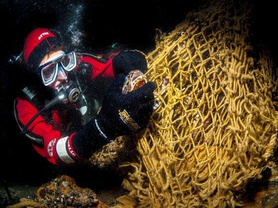 """Ein Taucher befreit einen Seeskorpion aus einem Netz am Wrack der """"Friedrich Engels"""" in der Ostsee östlich von Rügen: Dänische Forscher haben ein Material entwickelt, das Sauerstoff so gut speichert, dass man künftig keine Sauerstoffflaschen mehr unter Wasser benötigen würde."""