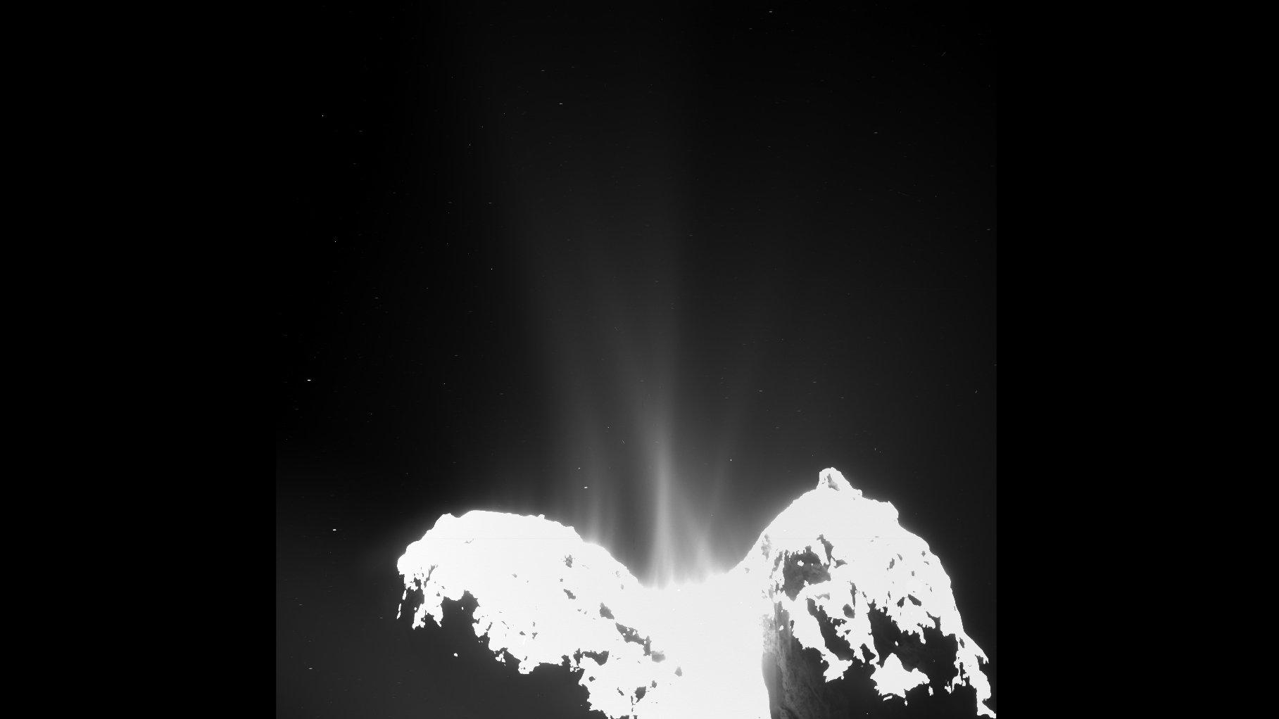Gasströme auf dem Kometen Tschuri:Die Aufnahme der OSIRIS-Kamera vom 10. September 2014 zeigt, dass nahezu der gesamte Kometenkörper aktiv ist – die Gasströme reißen Gasströme mit ins All. Um den Staub sichtbar zu machen, mussten die Wissenschaftler die Aufnahme drastisch überbelichten.