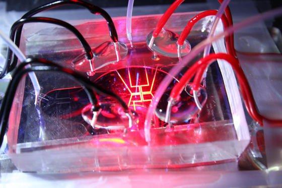 Mit welcher Frequenz Wassertröpfchen durch die Kanäle eines Mikrofluidik-Chips fließen, können Göttinger Max-Planck-Forscher präzise steuern. Der Chip ist ein etwa neun Quadratzentimeter großer, durchsichtiger Kunststoffblock, durch den dünne Röhrchen verlaufen. Durch die vier transparenten Schläuche wird Öl und Wasser in die Röhrchen gedrückt. Um die Bewegungen der Tröpfchen zu kontrollieren, legten die Forscher ein elektrisches Feld an den Chip an. Die Elektroden sind als gelbe Linien zu sehen, die roten und schwarzen Kabel sind die Stromleitungen. Die Frequenz der Tröpfchen wandelten die Forscher in Töne um.