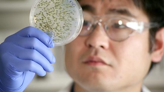 Chemiker Isaac Yonemoto arbeitet an einem Krebsmedikament. Per Crowdfunding sammelt er jetzt Geld dafür. DieRezeptur wird nicht patentiert, sondern frei verfügbar sein. Dadurch wäre das Mittel deutlich preiswerter als andere Produkte.