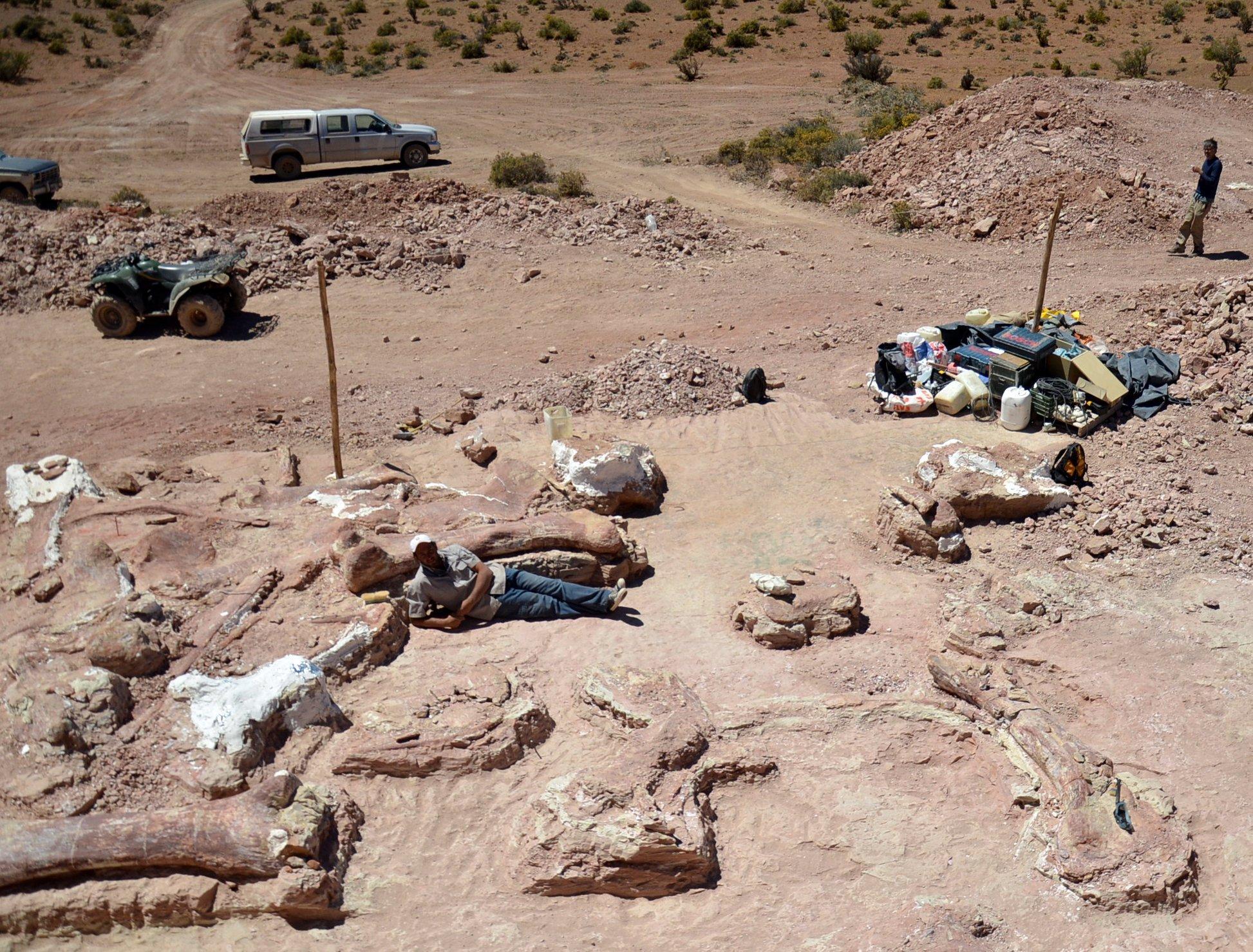 Deutlich zu sehen sind die verschiedenen Knochenfunde in der Ausgrabungsstelle südwestlich von Trelew (Argentinien) in der Provinz Chubut.