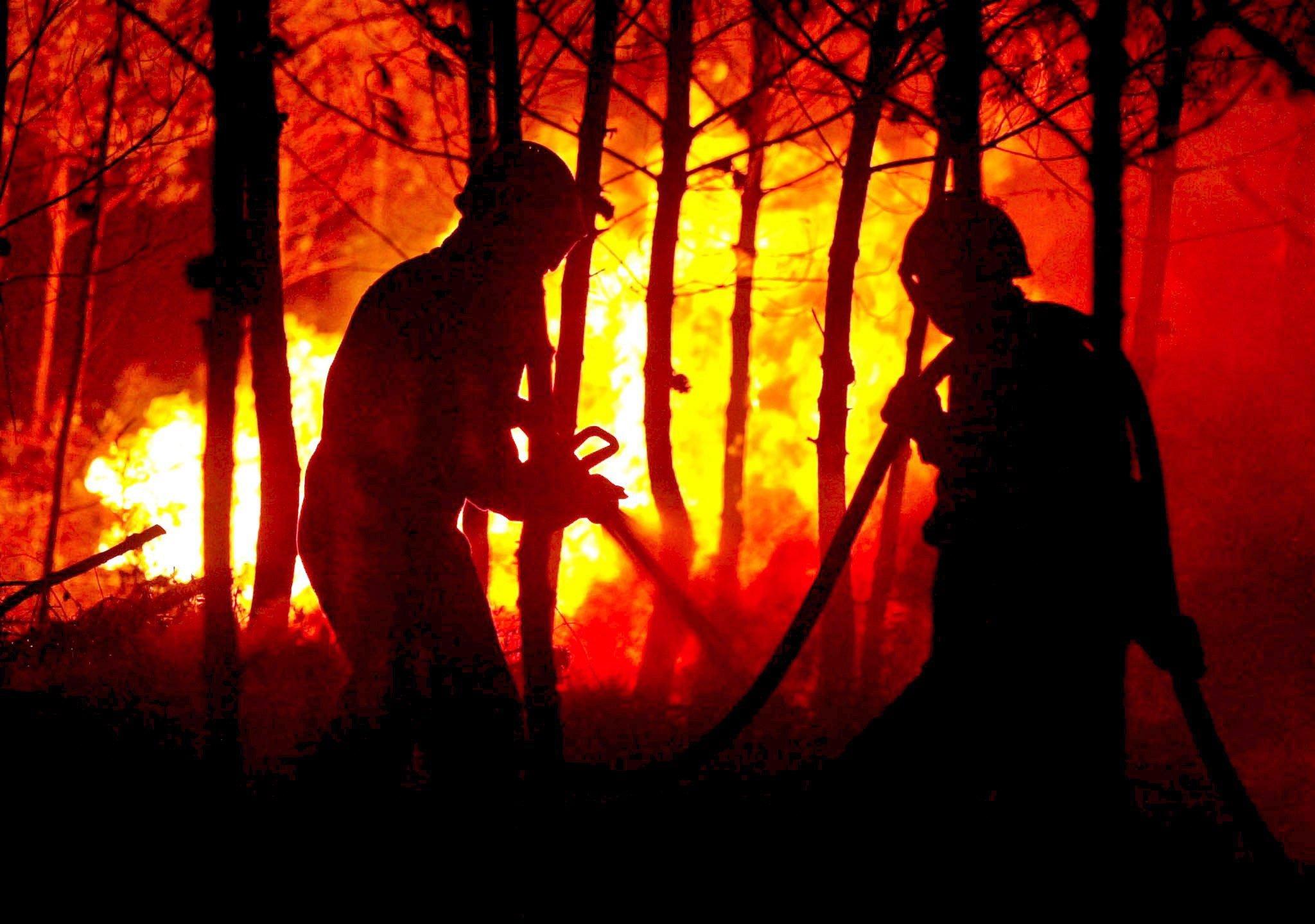 Die Gefahr von Waldbränden steigt, je häufiger es blitzt. Und je wärmer es auf der Erde wird, um so mehr Gewitter wird es geben.