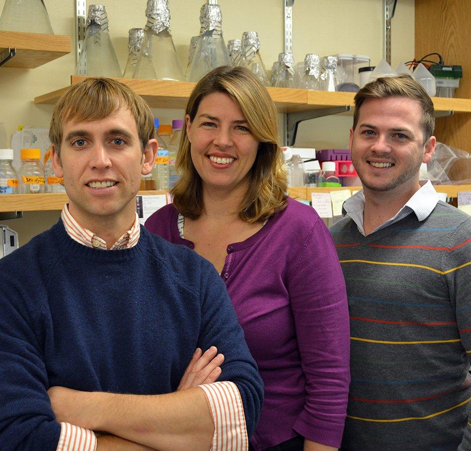 Sie haben das Ebola-Virus mit Hilfe der 3D-Technik beobachtet: die Forscher Andrew Ward, Erica Ollmann Saphire and Daniel Murin.