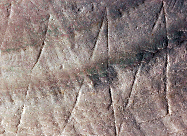 Details einer Gravur auf einer Muschel, die Forscher auf der indonesischen Insel Java entdeckt haben: Die Gravuren sollen die bisher ältesten bekannten von Urmenschen geschaffenen geometrischen Muster sein und ein Alter von 430.000 bis 540.000 Jahre haben.