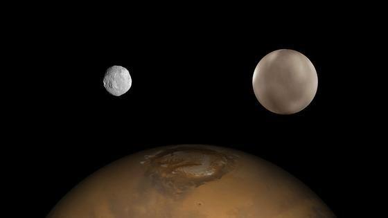 Vesta und Ceres sind kleine Körper. Aus solchen Fragmenten entstanden einst die Planeten des Sonnensystems. Dargestellt sind beide Körper im Größenvergleich zum Mars.