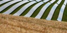 Solarzellen aus der Sprühdose