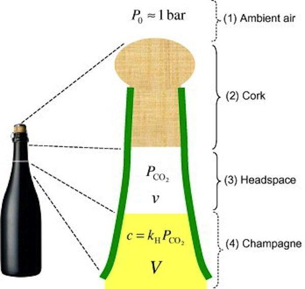 Die vier Bereiche, die ins thermodynamische Modell mit einfließen (von oben nach unten): Umgebungsluft, Korken, gasgefüllter Flaschenhals, Sekt in der Flasche.