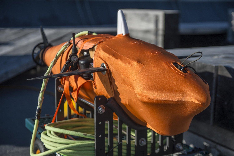 Im Inneren von Silent Nemo befinden sich neben der Steuerungstechnik mehrere Kameras und Sensoren. Mit diesen kann der schwimmende Spion U-Boote, Schiffe und sogar Radioaktivität aufspüren.