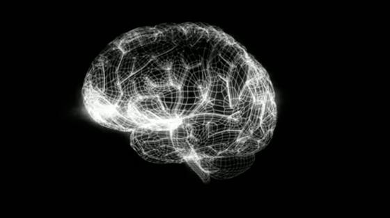 Mit 3-D-Modellen des menschlichen Gehirns sollen Ärzte und Wissenschaftler zukünftig den Funktionsweisen einzelner Hirnregionen auf die Schliche kommen. Experten erhoffen sich wirkungsvollere Behandlungen neuronaler Störungen.
