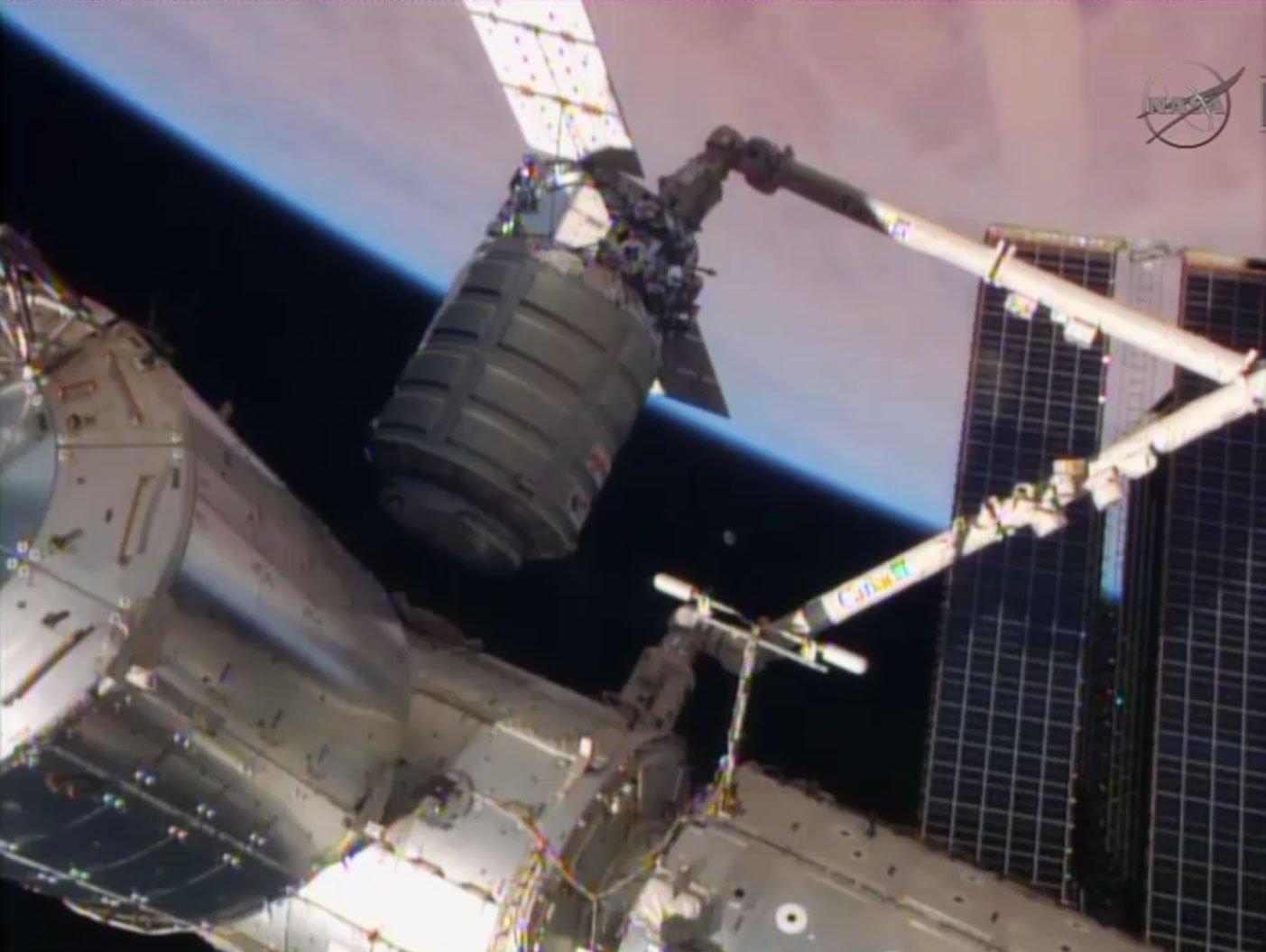 Mit dem Greifarm Canadarm2 holt die ISS den Transporter Cygnus heran, der 1,2 Tonnen Material mitgebracht hat.