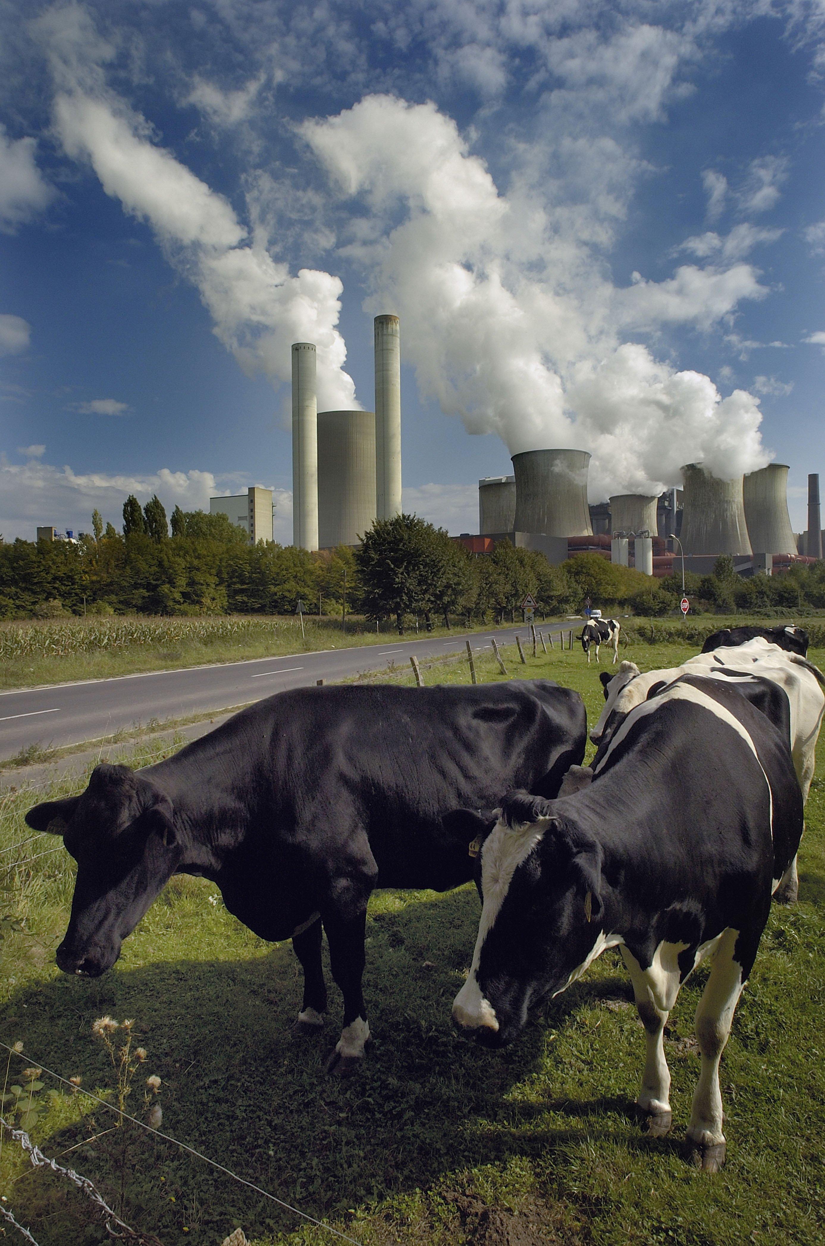Landwirtschaft und Kraftwerke gehören zu den größten Wasserverbrauchern und werden besonders unter der verschärften Knappheit zu leiden haben.