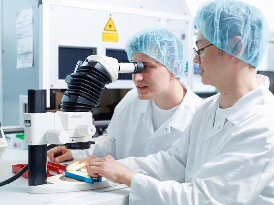 Forschungslabor in der Medizin:Ein großer Teil des Geldes und der Arbeitskraft in der Forschung werden verschwendet. Immer mehr Forschungsergebnisse sind kaum relevant, beklagt das Forschernetzwerk DCZ.