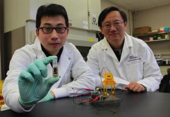 Professor Yi-Heng Percival Zhang (re.) und Zhiguang Zhu von der Virginia Techzeigen ihre neue Zucker-Brennstoffzelle.