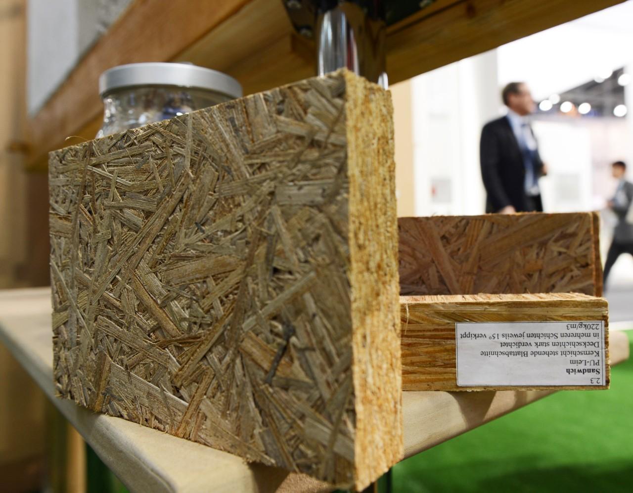 Gepresste Platte aus Rohrkolben: Die Ähnlichkeit mit Holzplatten aus Holzresten ist unübersehbar.