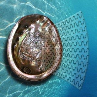 Das neue Glas mit den eingravierten wellenförmigen Rissen ahmt die Mikro-Struktur von Perlmutt nach. Dadurch wird die Energie beim Aufprall absorbiert und die Brüchigkeit des Glases wesentlich verringert.