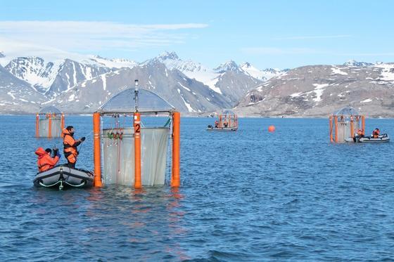 Das erste Mesokosmen-Experiment fand 2010 in Spitzbergen statt. Die Arktis wird als erste Region von der Ozeanversauerung betroffen sein. Jetzt untersuchen Kieler Forschung die Folgen der Versauerung im Meer rund um die Kanarischen Inseln.