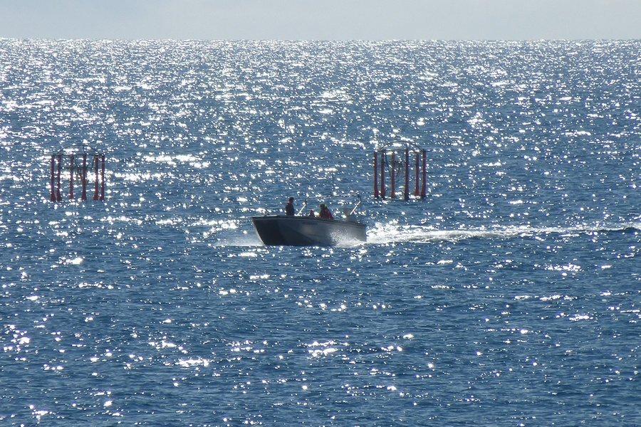 Die Kieler Mesokosmen, fast abgeschlossene Lebensräume, wurden am Wochenende in der Melenara-Bucht auf Gran Canaria verankert. Die Forscher beobachten wie in einem riesigen Reagenzglas, wie sich zum Beispiel die Nahrungskette verändert. Dafür simulieren sie in den Mesokosmen die angenommene Meeresversauerung im Jahr 2100.