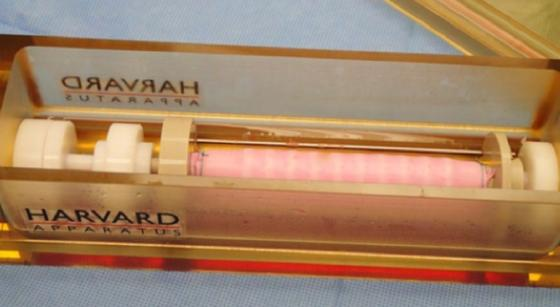 Die US-Firma HART (Harvard Apparatus Regenerative Technology)züchtet mit Hilfe von Kunststofffasern und Stammzellen künstliche Luftröhren.