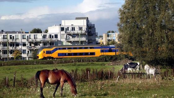 Zug von Nederlandse Spoorwegen: Die niederländische Eisenbahngesellschaftwill ihre Züge zukünftig mit Ökostrom versorgen. Sie braucht dafür pro Jahr rund 1,4 Terawattstunden Strom.