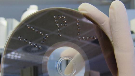 Biosensoren auf der DVD-Oberfläche reagieren auf die Testflüssigkeit und verändern ihre optischen Eigenschaften. So lassen sich auf dem Bildschirm Giftstoffe identifizieren. Wesentlich günstiger und schneller als mit herkömmlichen Verfahren.