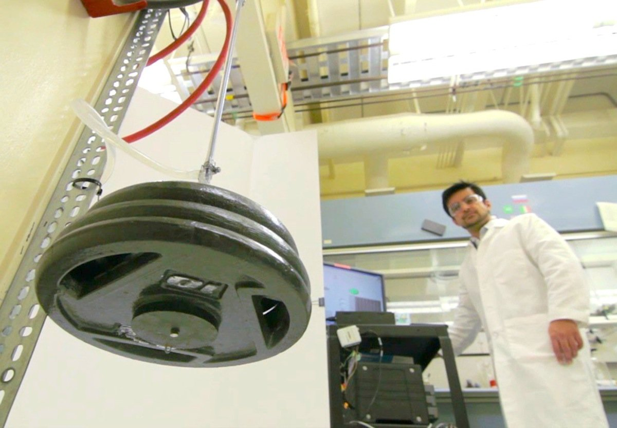 """Die Wissenschaftler aus Texas demonstrieren die Stärke des künstlichen Muskels. Ein """"Muskelstrang"""" aus 100 Fasern kann ein Gewicht von 725 Kilogramm halten."""