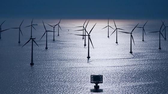Windpark Lillgrund zwischen Malmö und Kopenhagen: Besonders Offshore-Anlagen wie diese könnten vom lernenden System profitieren und wirtschaftlich rentabler werden.
