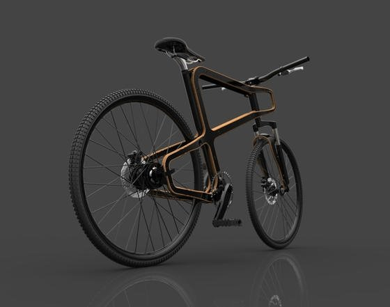 fahrr der aus holz werden immer eleganter und technisch aufwendiger. Black Bedroom Furniture Sets. Home Design Ideas