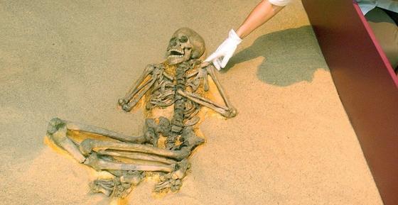 Symbolfoto Skelettfund: Forscher haben ein 3200 Jahre altes Skelett eines Mannes gefunden, an dem sich eindeutig der Befall mit Metastasen nachweisen ließ.