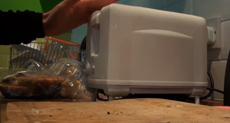 Streicheleinheit für Brad: Wenn der Toaster nicht ausgelastet ist, ist er sauer.