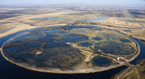 Die LOFAR-Zentralstationen im Nordosten der Niederlande auf einem eigens angelegten Feld zwischen Exloo und Buinen in Drenthe. Das größte Radioteleskop der Welt wurde 2010 in Betrieb genommen.