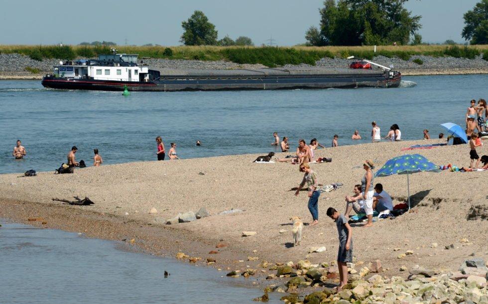 Ausflügler beim Baden im Rhein bei Oppenheim in Rheinland-Pfalz: Forscher haben festgestellt, dass viele Flüsse in Europa insbesondere durch Pestizide aus der Landwirtschaft belastet sind.
