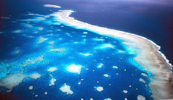 Luftaufnahme des Great Barrier Riffs vor der Küste Australiens.