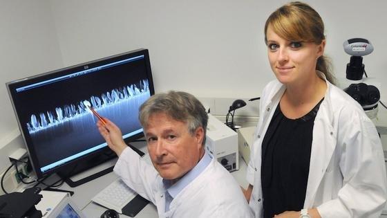 Prof. Dr. Manfred Köller und Dr. Christina Sengstock zeigen die mikroskopisch vergrößerte Seitenansicht der nanostrukturierten Titanoberfläche. Sie hat ähnlich wie der Zikadenflügel antibakterielle Eigenschaften.