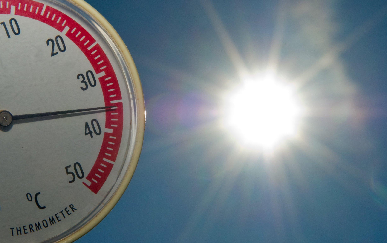 Bei Hitzeperioden können ungepflügte Felder die lokale Temperatur um bis zu zwei Grad senken, weil sie das Sonnenlicht stärker reflektieren als umgepflügte Felder.