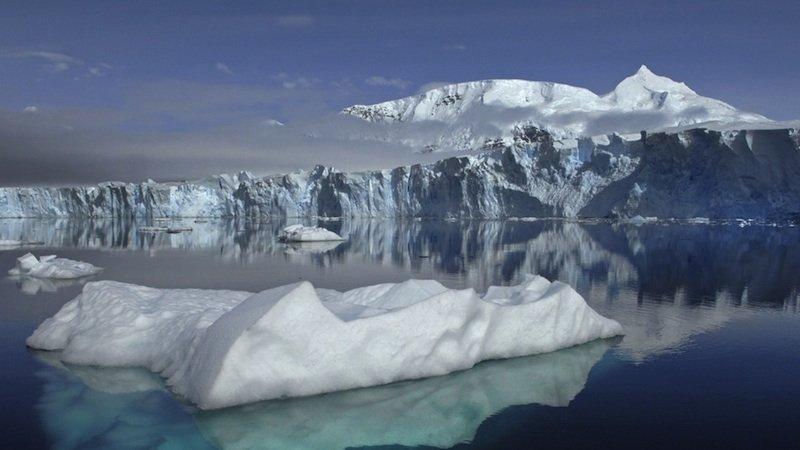 Die Erderwärmung führt dazu, dass sich Kleinstlebewesen in Eisregionen schneller vermehren können. Sie reduzieren die Reflektionskraft des Eises um bis zu 20 Prozent.