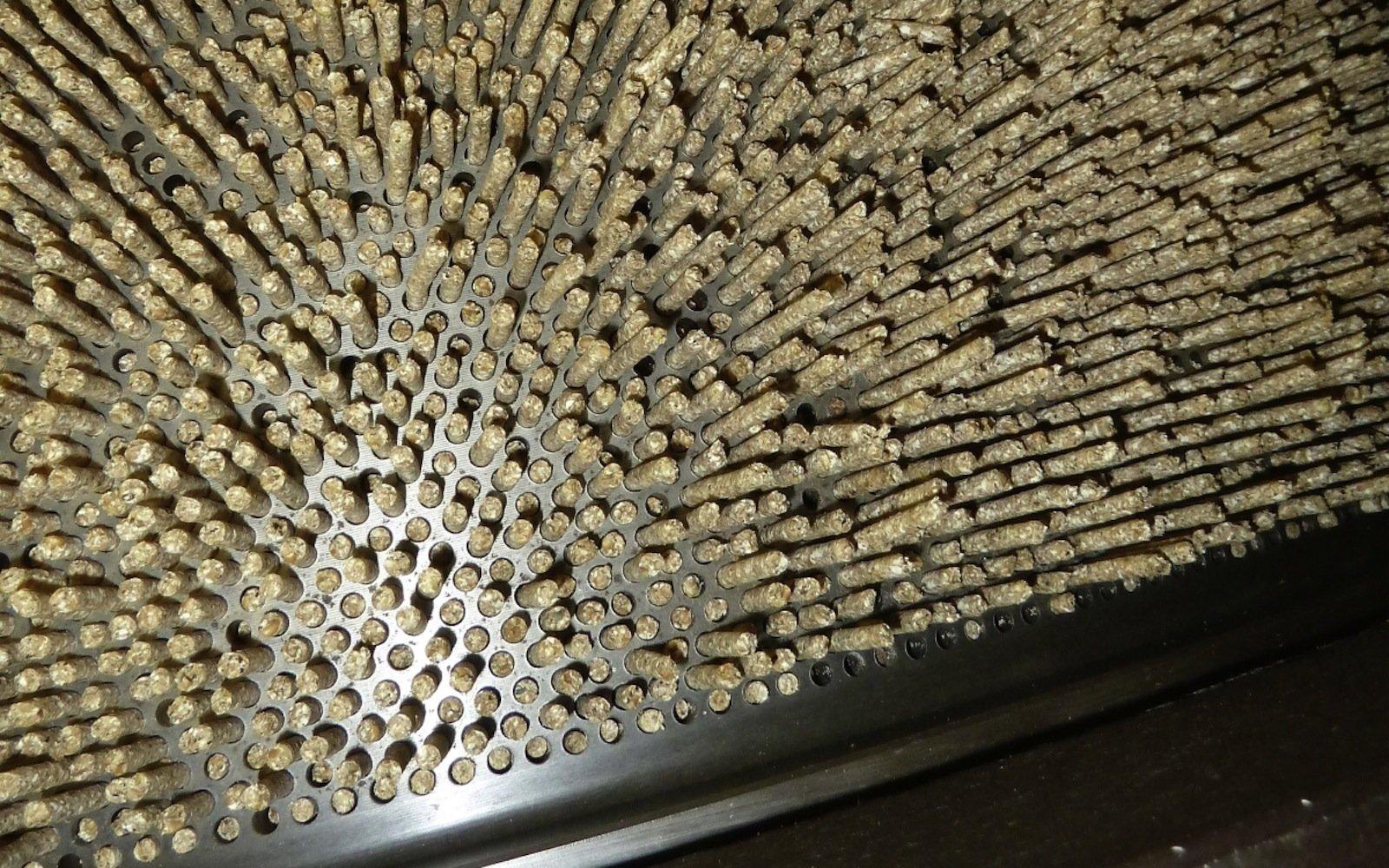 Am Ende des Produktionsprozesses wird das Mischfutter getrocknet und pelletiert. Dies ist der energieaufwendigste Teil der Herstellung.