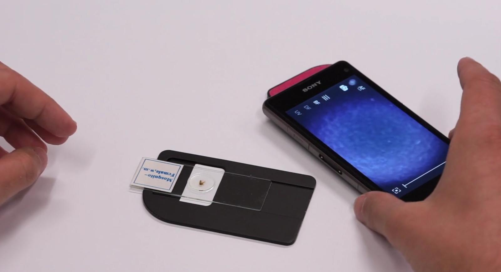 Mit wenigen Handgriffen lässt sich ein Objekt für die Smartphone-Mikroskopie vorbereiten. Angeblich zeigen Ärzte und Forscher bereits Interesse.